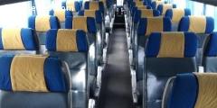 Lot siege bus autocar